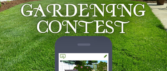 Gardening_Contest_ComicReply