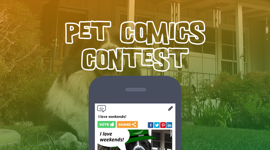 Pet_Comics_Contest_ComicReply_