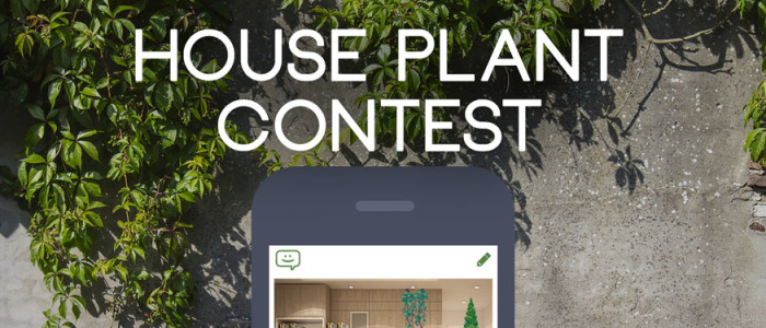 House-Plant_Contest-ComicReply